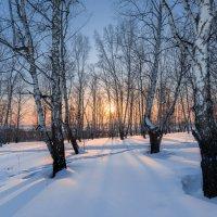 Зимний вечер :: Сергей Добрыднев