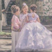 Три невесты... :: Сергей Шруба
