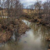 Вешние воды маленькой реки... :: марк