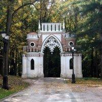 Виноградные ворота. :: Люба