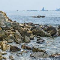 Скалистый берег Японского моря... :: Арина
