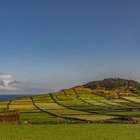 Azores 2018 Terceira 4 :: Arturs Ancans