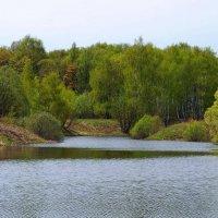 Весна в Подмосковье :: Геннадий
