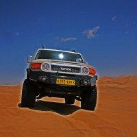 В Пустыне Намиб. :: Jakob Gardok