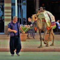 На улицах Аланьи... :: Sergey Gordoff