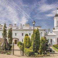 Полоцк. Свято-Евфросиньевский православный монастырь :: bajguz igor