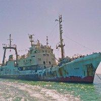 ,, Улан,, у Берегов Намибии :: Jakob Gardok