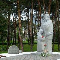 Памятник Матери-вдове в парке Победы. Киев :: Тамара Бедай