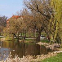 Весна в Кентшине. :: donat