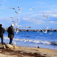 Осеннее развлечение на море :: Ольга (crim41evp)