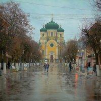 Майский дождь :: Евгения Кирильченко
