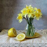 С нарциссами и лимоном :: SaGa