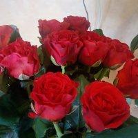 Розы к дню рождения :: Serg