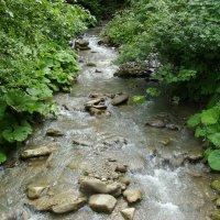 Горная   река   в   Квасах :: Андрей  Васильевич Коляскин