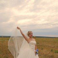 Невеста в поле) :: Елена Салтыкова(Прохорова)