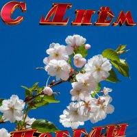 С ДНЕМ ПОБЕДЫ!!! :: GALINA
