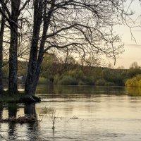 разлив реки :: оксана