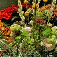 Цветы, надеюсь, скажут больше, чем слова....Всем желаю чудесного  весеннего настроения !!! :: backareva.irina Бакарева