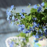 Голубая нежность. :: Лариса Исаева