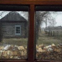 Сегодня дождь стучал в окно... :: Светлана Рябова-Шатунова