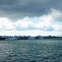 Морской пейзаж :: татьяна
