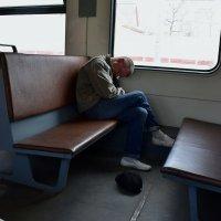 Бездомный :: dindin