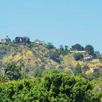 Калифорнийские холмы :: Николай Танаев