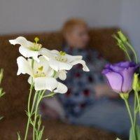 Два цветка :: Константин Шарун