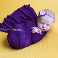 Маленькая Принцесса :: Татьяна Диораки