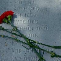 Цветы под именем твоим :: san05   Александр Савицкий