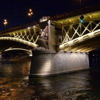 Будапешт. Мост Маргарет :: Татьяна Ларионова