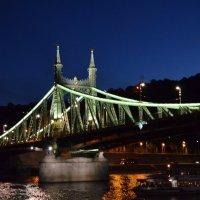 Будапешт. Мост Свободы :: Татьяна Ларионова