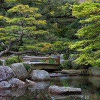 В японском саду :: slavado