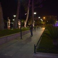 Парк с фантаном :: Ариэль Volodkova