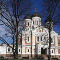 Александро-Невский собор, Таллин :: veera (veerra)