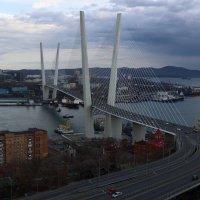 Владивосток. Мост через бухту Золотой Рог :: Татьяна Панчешная
