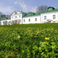 дом князья Волконский, дед Толстого :: Георгий