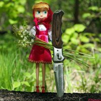 И манит нас волшебный майский лес.. :: Андрей Заломленков
