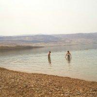 Мертвое море.Первые купальщики. :: Жанна Викторовна