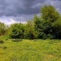 Природа :: Татьяна Королёва