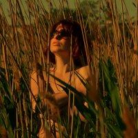 слияние с природой 2 :: Роза Бара