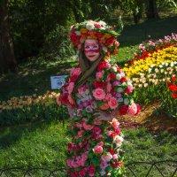 Цветочная фея :: Андрей Нибылица