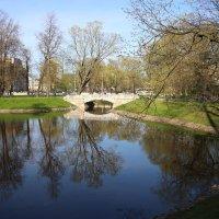 Михайловский сад в мае :: Наталья Герасимова