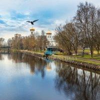Птица на кресте :: Юлия Батурина