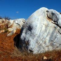 Каменная голова :: Нэля Лысенко
