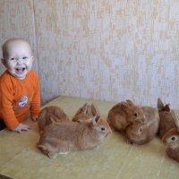 Внучок с крольчатами. :: Елена Салтыкова(Прохорова)