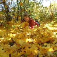 Кленовые листья. :: Елена Салтыкова(Прохорова)