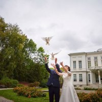 Летите голуби летите :: Александр