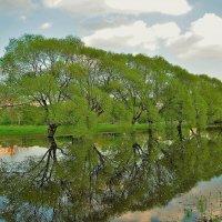 Мой милый Парк... :: Sergey Gordoff