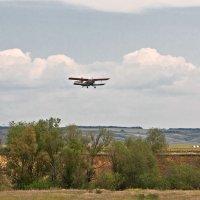 Учебный полет.  Бугуруслан. Оренбургская область :: MILAV V